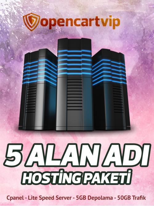 5 Alan Adı Hosting Paketi